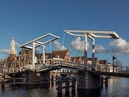 Haardhout in Haarlem